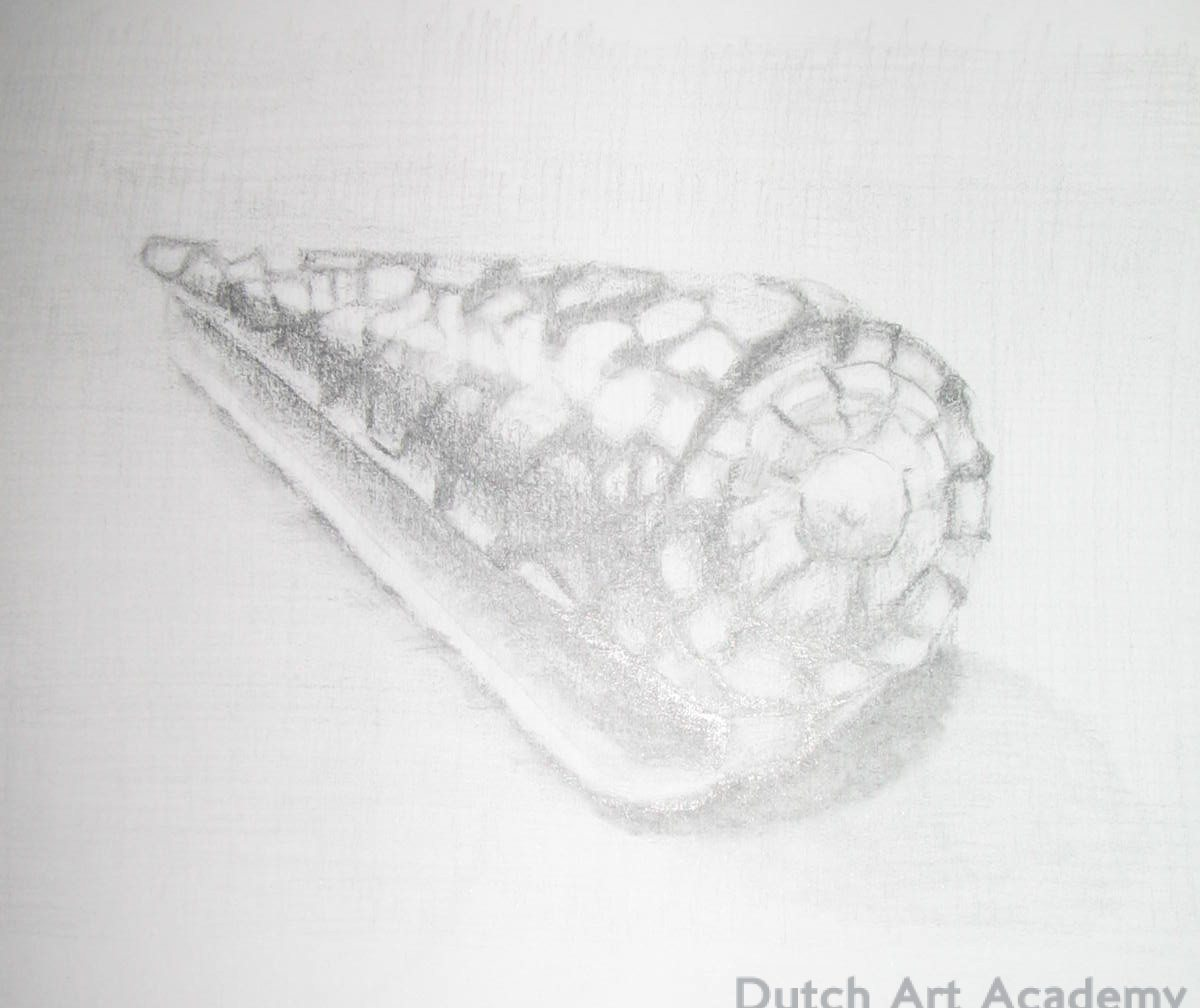Rembrandt shell